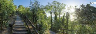 Décor mural extérieur – Escalier de L'Herbe – Collection Bassin