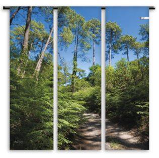Toile de transat Triptyque – Sentier Forêt – Collection Fougère